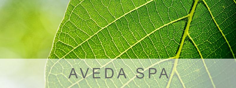 Aveda-Spa
